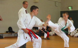Karate Home page