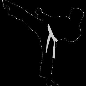 karate high kick icon
